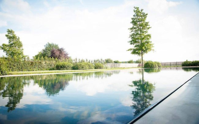 Landschapstuin met overloop biozwembad